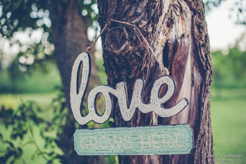 """Užrašas """"meilė"""""""